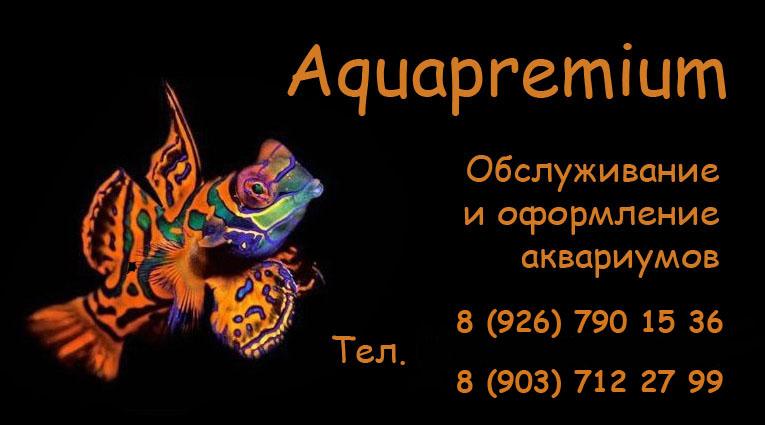 www.aquapremium.ucoz.ru